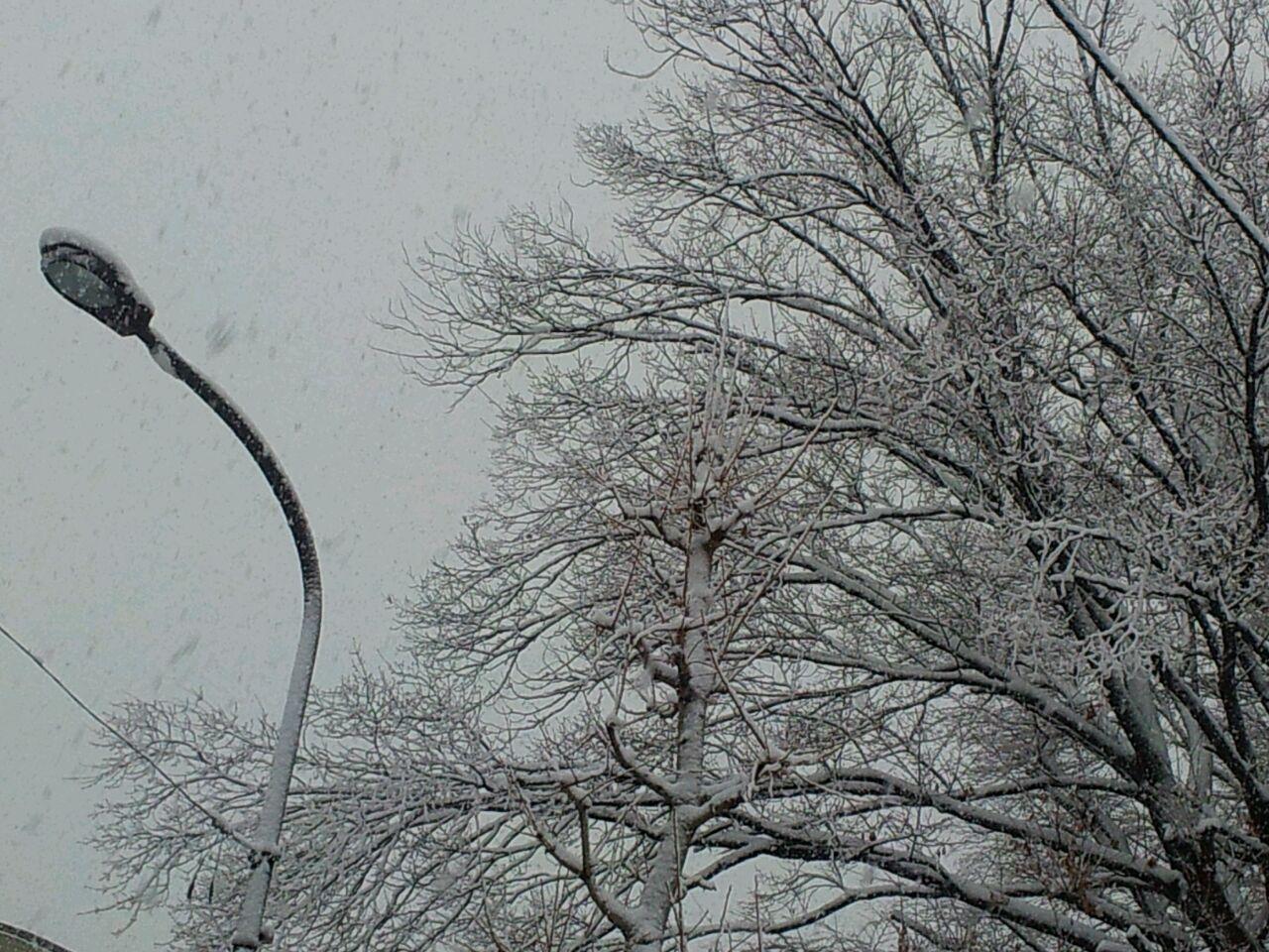 降雪の影響